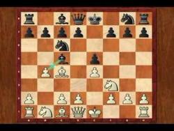 Гамбит Эванса. Шахматный видео урок Evans Gambit Opening