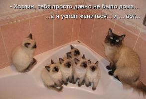 Вот как то так)))